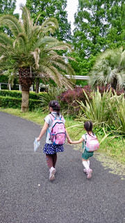 手をつないで歩く姉妹の写真・画像素材[978603]