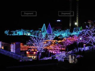 夜の街の景色の写真・画像素材[979066]