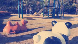 冬の公園の写真・画像素材[981677]
