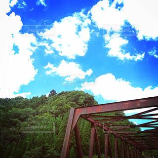夏の日差しの写真・画像素材[2417371]