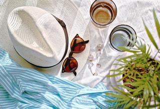 夏の日差しを浴びての写真・画像素材[1199257]