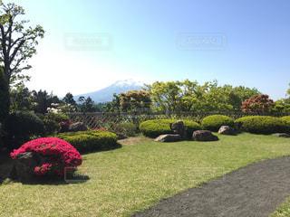 岩木山の見える庭園の写真・画像素材[1015445]
