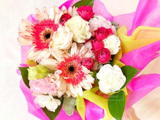 花束の写真・画像素材[1144088]