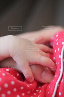 新生児の赤ちゃんの手の写真・画像素材[981277]