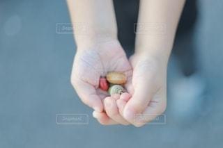小さな秋の写真・画像素材[2613784]