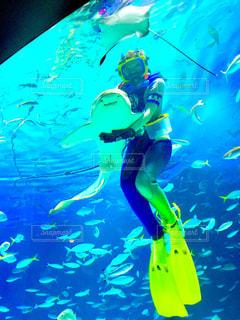 飼育員とサメの写真・画像素材[990836]