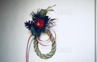 近くの花のアップの写真・画像素材[1003213]