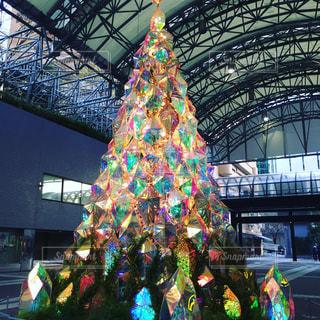 ガラス イルミネーション クリスマスツリーの写真・画像素材[982388]