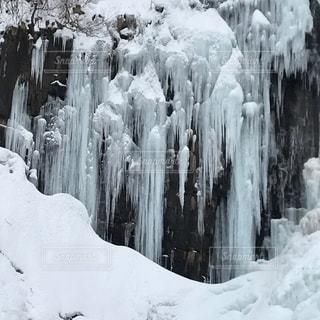冬、締め。の写真・画像素材[1030038]