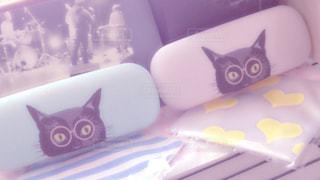 ペア猫ケースの写真・画像素材[983870]