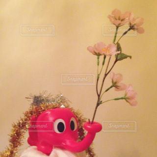 花咲くじょうろの写真・画像素材[983894]