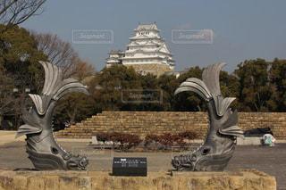 姫路城とシャチホコの写真・画像素材[999086]