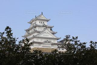 姫路城の写真・画像素材[999087]
