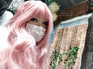 ピンク色のウイッグの写真・画像素材[1037229]