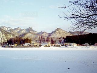 雪景色の写真・画像素材[990544]