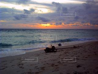 夕暮れの海と流木の写真・画像素材[997354]