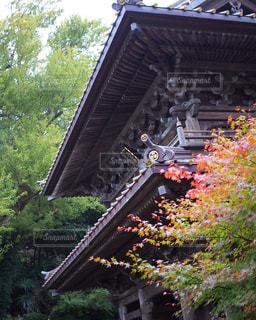 鎌倉の寺の写真・画像素材[983990]