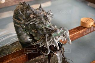 龍の手水の写真・画像素材[985319]