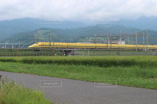 見たら幸せになる新幹線の写真・画像素材[984843]