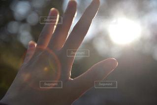 伸ばした手の写真・画像素材[985271]