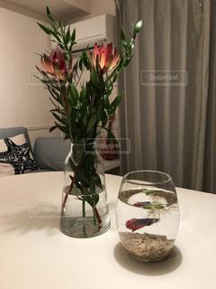 テーブルの上の花瓶の写真・画像素材[986680]