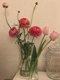 春のお花の写真・画像素材[987645]