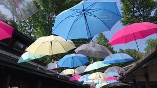カラフルな傘の屋根の写真・画像素材[986855]