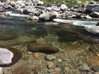 水が綺麗な川の写真・画像素材[986863]