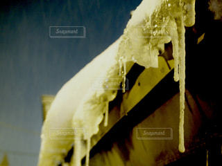 雪に覆われたホットドッグの写真・画像素材[988836]