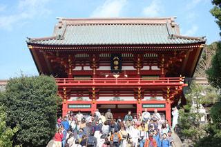 鎌倉鶴岡八幡宮の写真・画像素材[2959346]