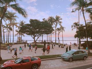 ヤシの木とビーチでの駐車 - No.987814