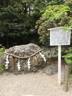 さざれ石 - No.989996