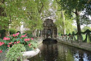 背景の水の庭園で人々 の集団の写真・画像素材[1202583]