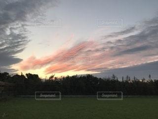 空の雲と大規模なグリーン フィールドの写真・画像素材[989433]