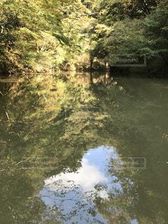 水面に映る空の写真・画像素材[1024361]
