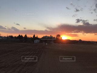 背景の夕日とツリーの写真・画像素材[1133893]