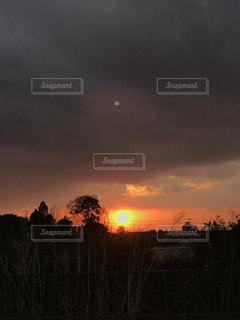 背景の夕日とツリーの写真・画像素材[1133895]