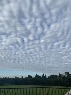 巨大な鱗雲の写真・画像素材[2494416]
