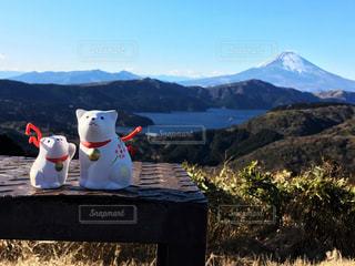 富士山🗻と犬🐶の写真・画像素材[990803]