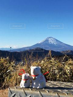 富士山と犬(戌年)🐶の写真・画像素材[990806]