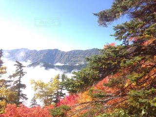 燕岳の紅葉の写真・画像素材[1215678]