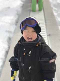 雪に大興奮の写真・画像素材[989690]