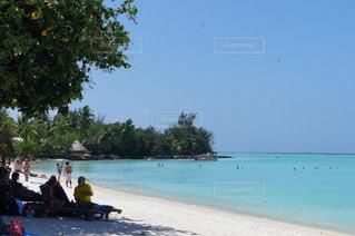 ボラボラ島のビーチの写真・画像素材[991822]