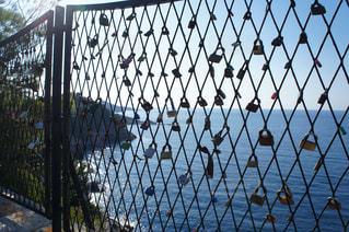 フェンスにたくさんの南京錠の写真・画像素材[993247]