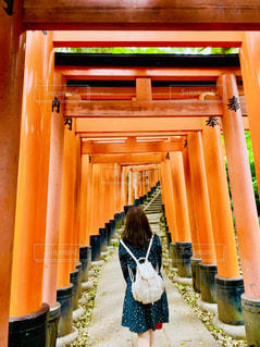 伏見稲荷大社の鳥居の写真・画像素材[2156682]