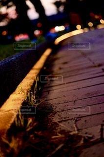 夕暮れ時の歩道と雑草の写真・画像素材[4677387]