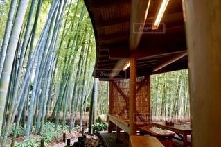 竹林と休憩所の写真・画像素材[4814454]