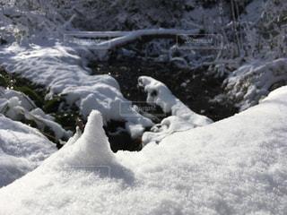 雪の写真・画像素材[992193]