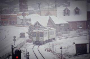 雪に覆われた車の写真・画像素材[1186010]