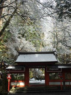 雪景色の貴船神社の写真・画像素材[992925]
